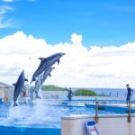 沖縄の観光スポット 口コミランキング Top20